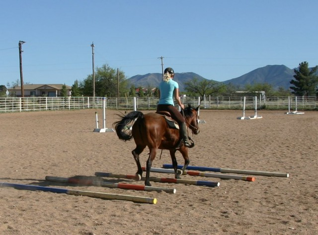 Now Dora trots ground poles with power and confidence.